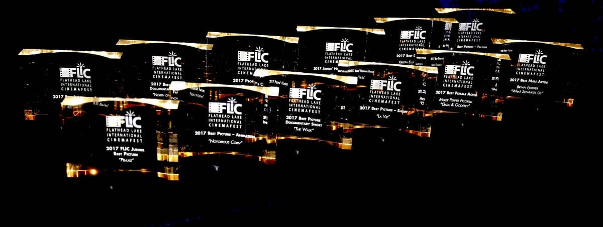 FLIC Awards 2017 Summary News Release